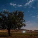 Perséide au clair de Lune