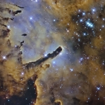 NGC 6823, carrière d'étoiles