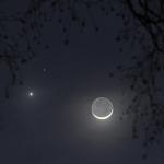 L'Amour et la Guerre au clair de Lune