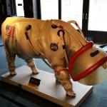 Un bond de géant pour l'espèce bovine