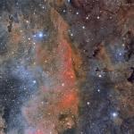Etoiles et nuages colorés dans le Cygne