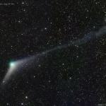 Les queues de la comète Catalina