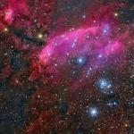 IC 4628, la nébuleuse de la Crevette