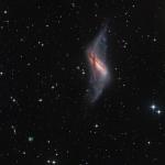 La galaxie à anneau polaire NGC 660