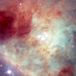 Etoiles rapides et planètes solitaires dans la nébuleuse d'Orion