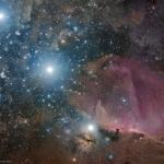Orion : ceinture, flamme et tête de cheval