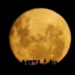 Silhouettes de la Pleine Lune