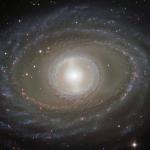 Rubans et perles de la galaxie spirale NGC 1398