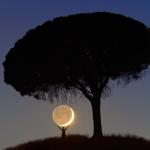 Je t'ai apporté la Lune