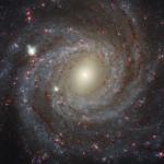 NGC 3344