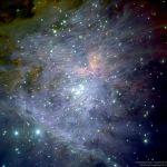 Champs magnétiques d'Orion