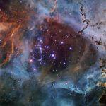NGC 2244, l'amas de la Rosette