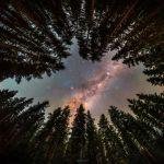 Une clairière sur la galaxie