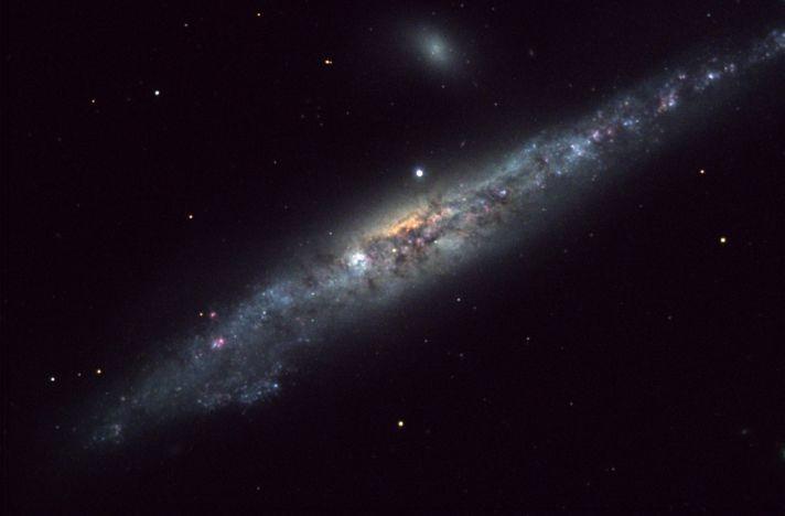 NGC4631: la Galaxie de la Baleine