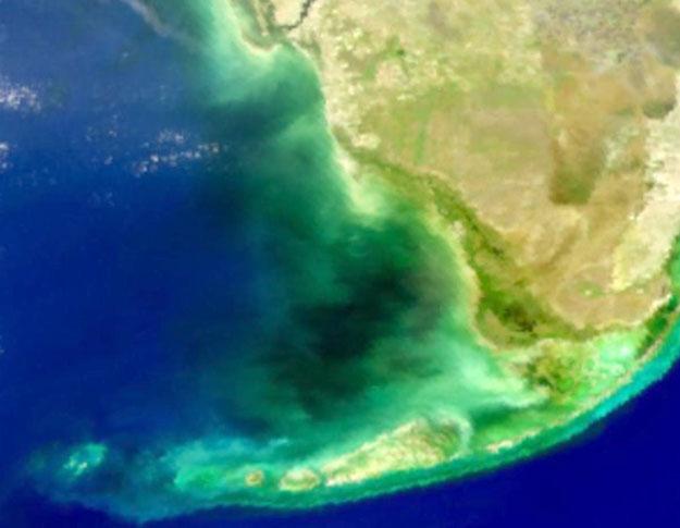 Mystérieuse eau noire dans la baie de Floride