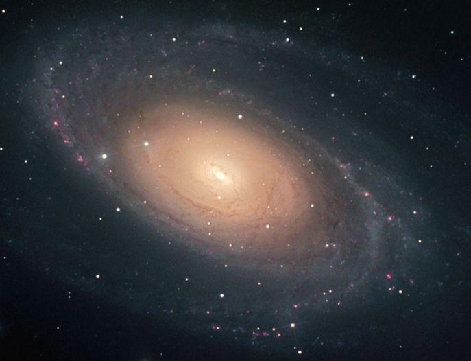 La brillante galaxie M81