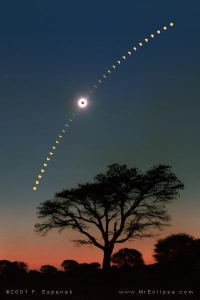 Eclipse au-dessus des Acacias