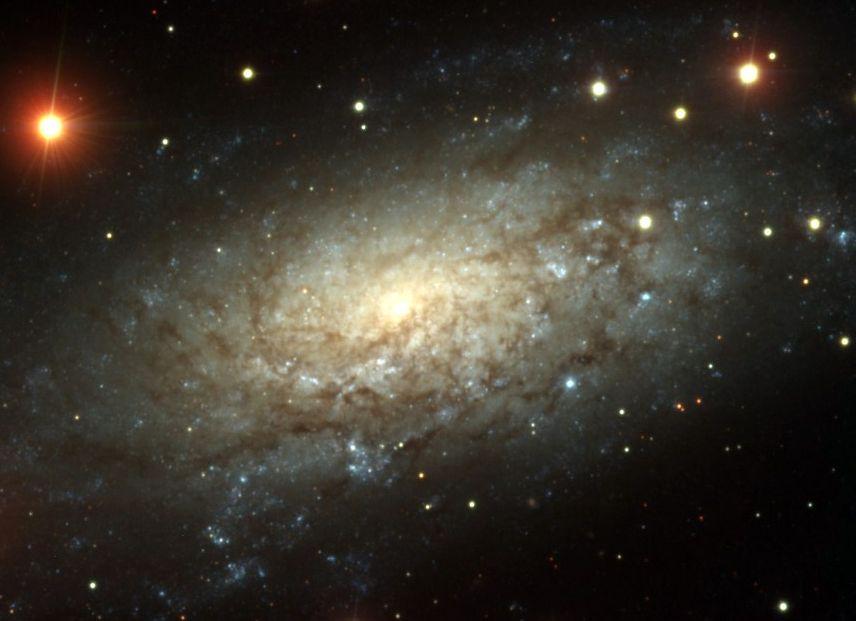 NGC3621: Loin au-delà du Groupe Local