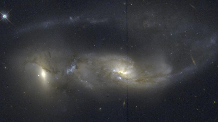 Arp81: 100 millions d\'années après