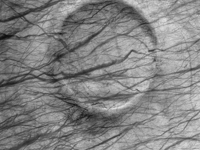 Un cratère martien plein de tourbillons de poussière