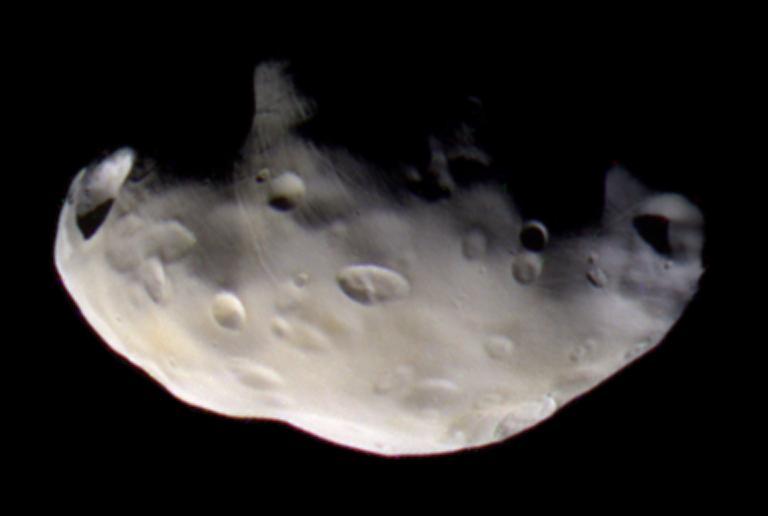 Pandora, lune berger