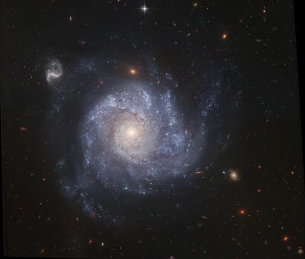NGC 1309 et ses amis