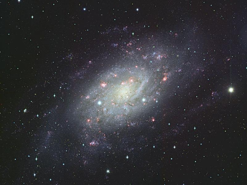 La galaxie spirale NGC 2403