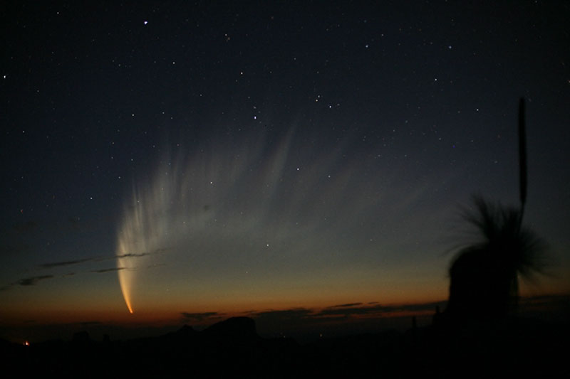 La magnifique queue de la comète MacNaught