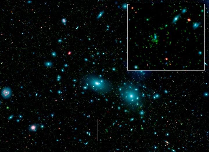 Galaxies Naines dans l'Amas de Coma