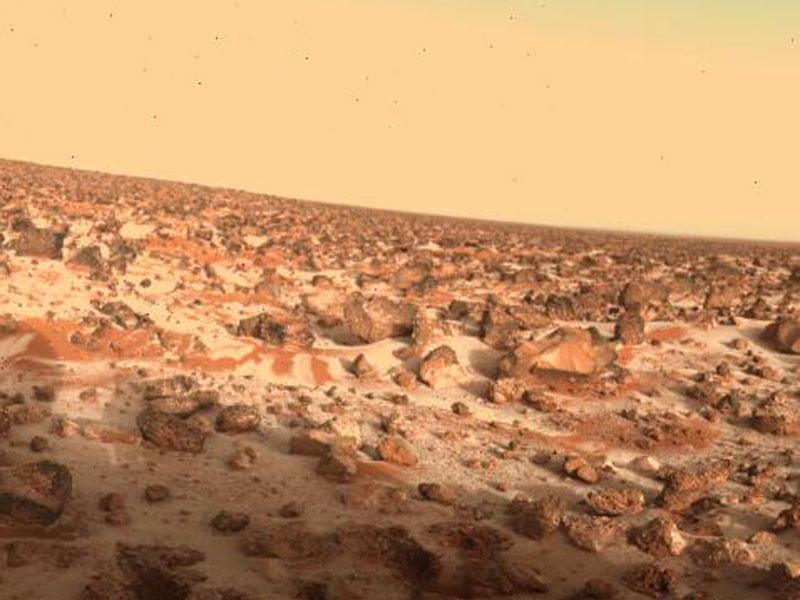 Une forme de vie accommodée au peroxyde d'hydrogène pourrait-elle survivre sur Mars ?