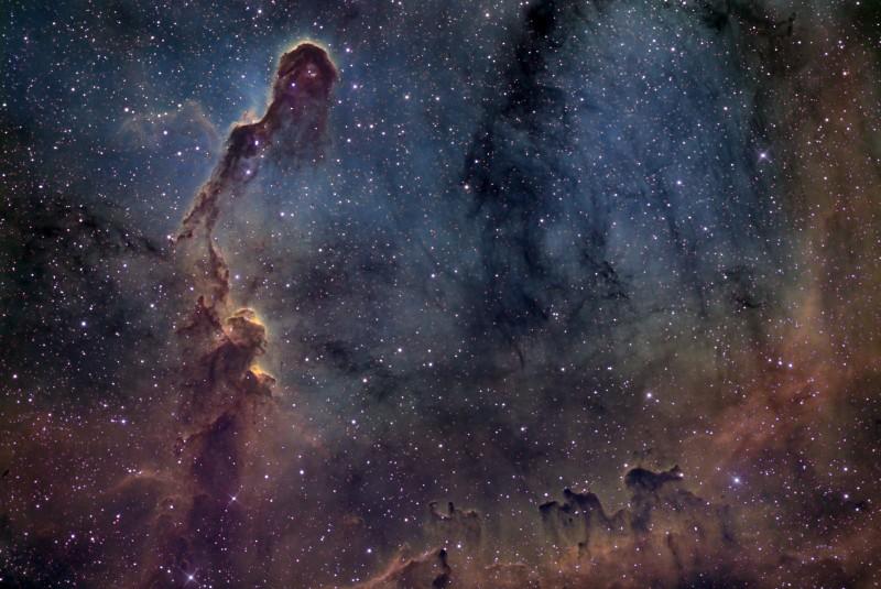 La trompe d'éléphant dans IC 1396