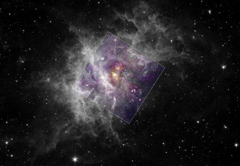 Le jeune amas d\'étoiles Westerlund 2
