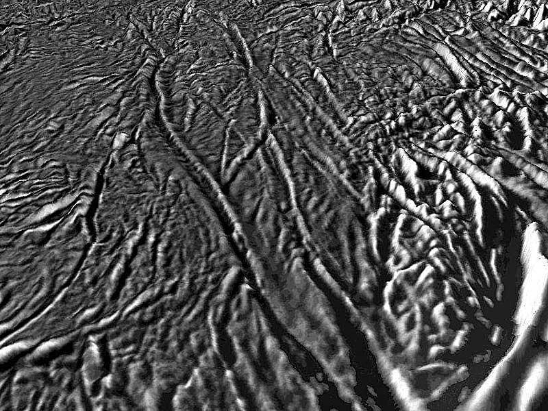 En rase-mottes au-dessus des rayures du Tigre d'Encelade