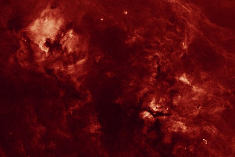 Un Cygne sans étoiles