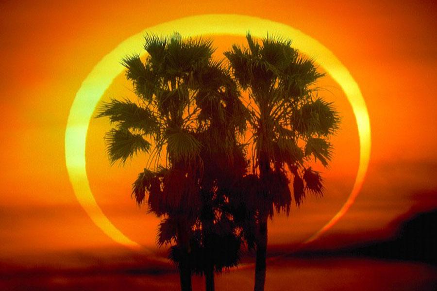 L\'éclipse annulaire du 26 janvier 2009