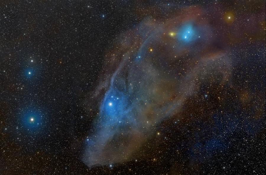 IC 4592, une tête de cheval dans le bleu