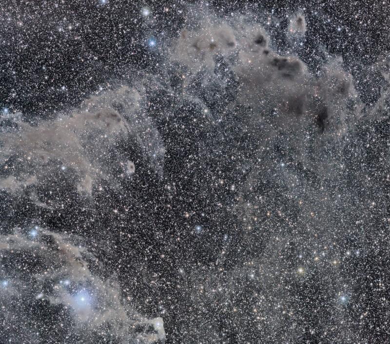 Les nébuleuses par absorption du Caméléon