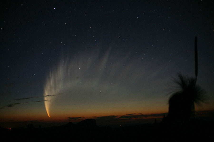 La magnifique queue de la comète Mac Naught