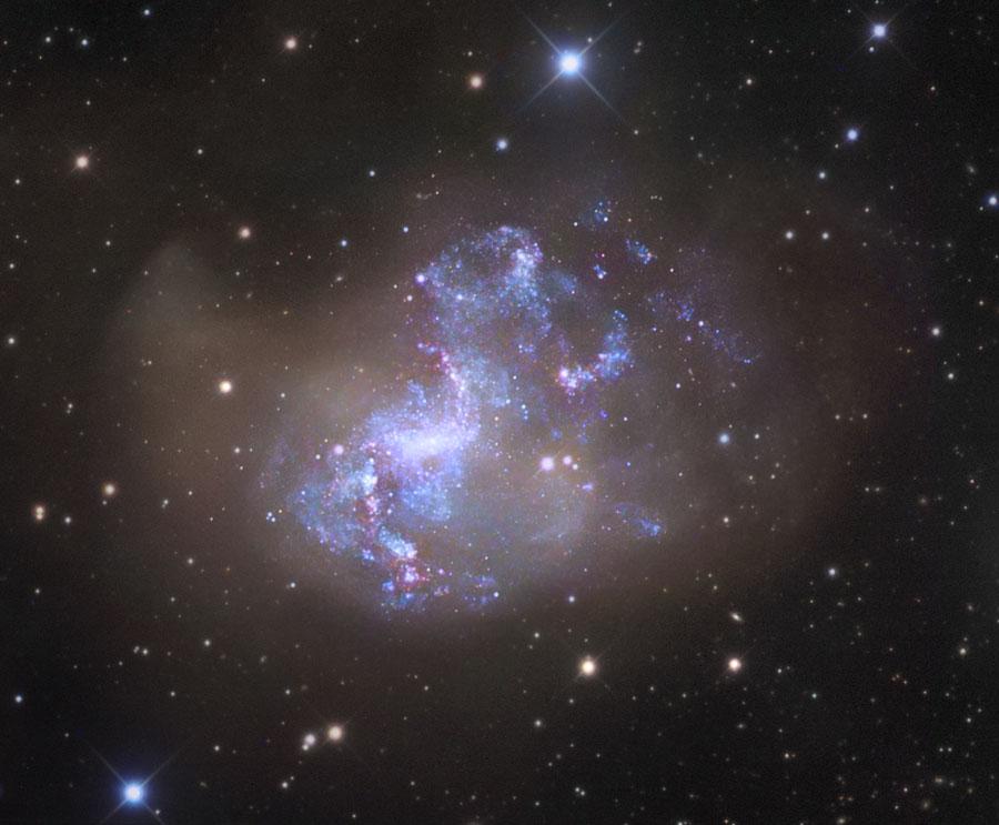 L\'insolite galaxie à sursaut de formation d\'étoiles NGC 1313