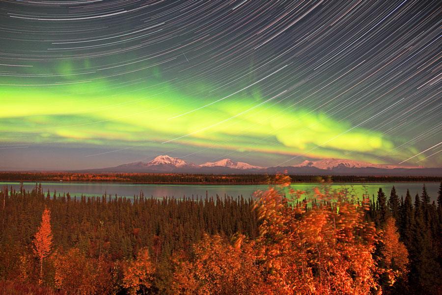 Aurores polaires au-dessus de l\'Alaska