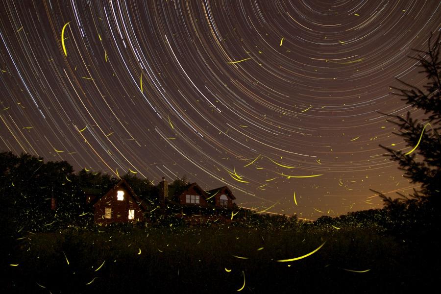 Songe d'une nuit des étoiles