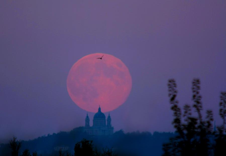 Lune des moissons de septembre
