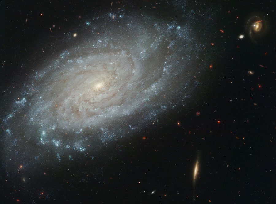 La galaxie spirale NGC 3370 vue par Hubble