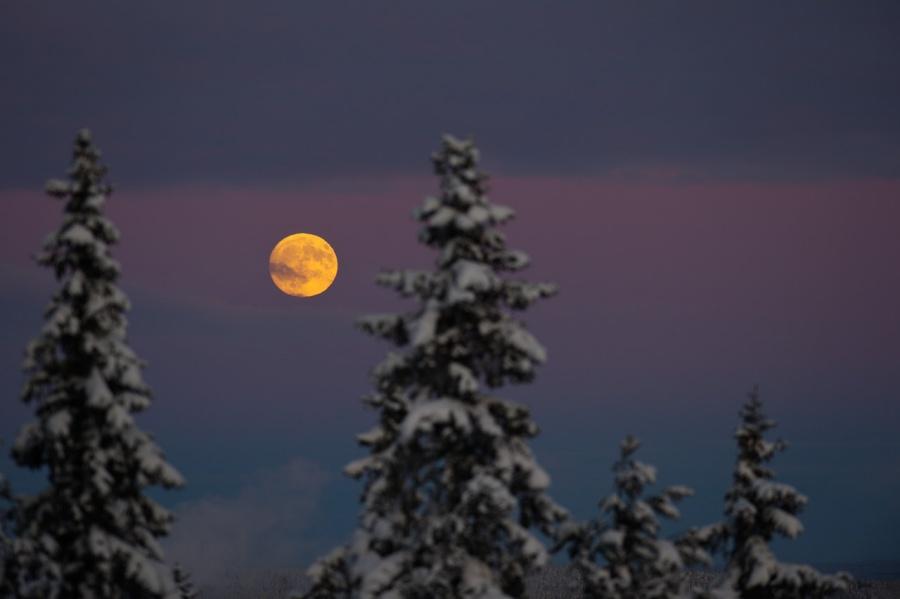 La Lune des Loups