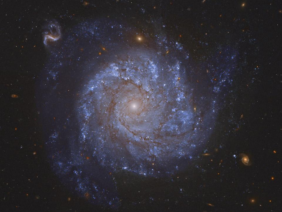 La galaxie spirale NGC 1309 et ses amies
