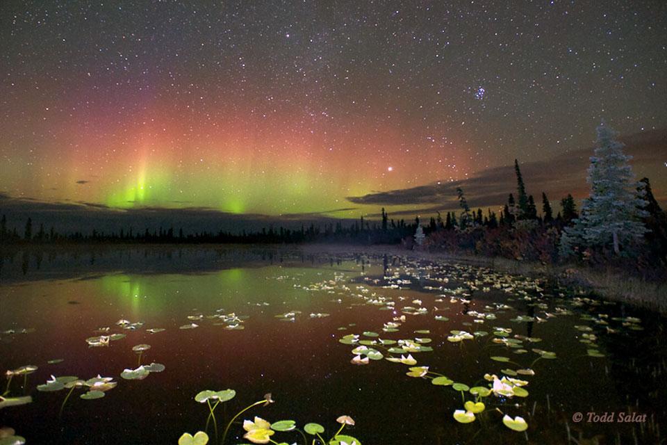 Aurores boréales sur l\'Alaska