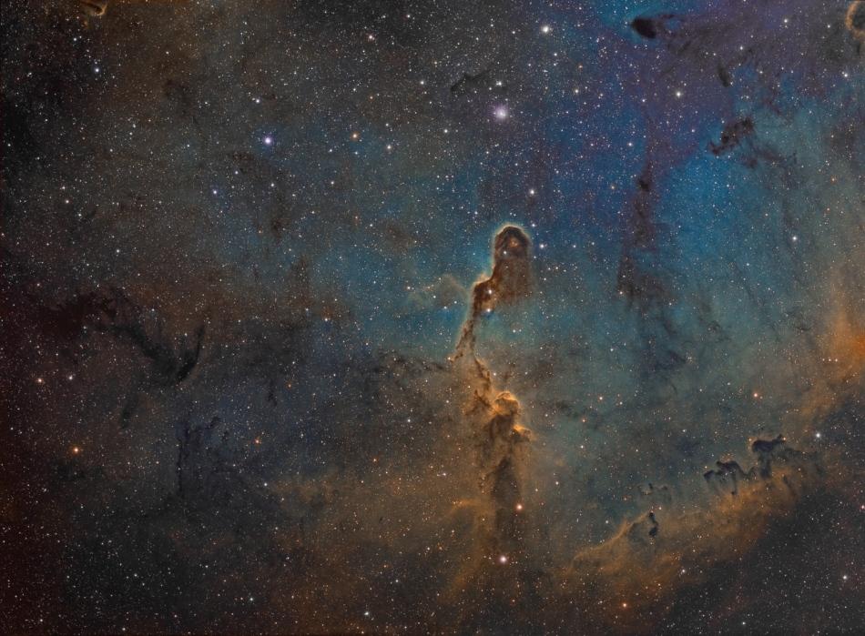 La trompe d\'éléphant dans IC 1396