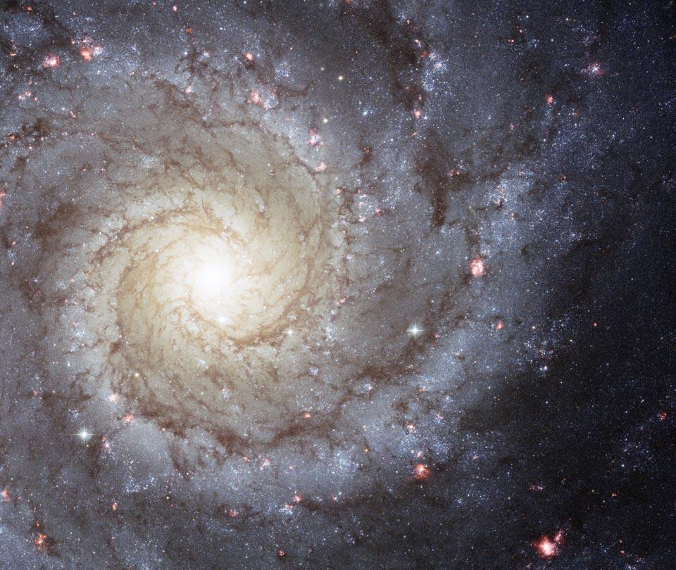 M 74, pure spirale