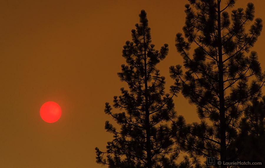 Soleil de braise en Californie