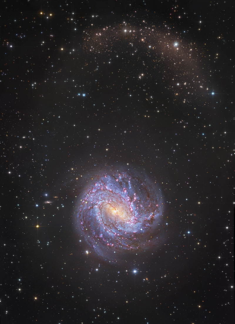 Les courants d\'étoiles de M83